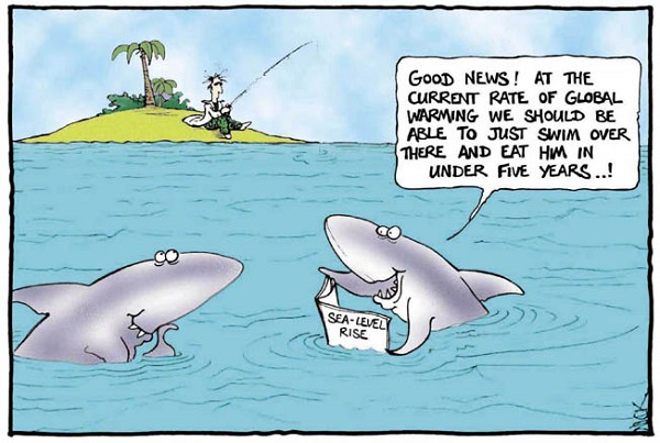 Best Shark Joke Ever